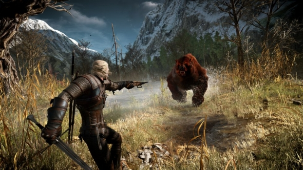 the-witcher-3-bear-combat